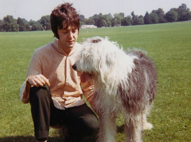 Paul McCartney with sheepdog Martha