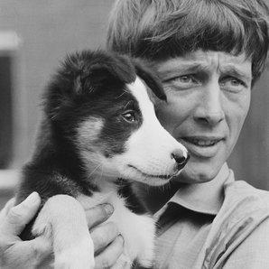 John Noakes 1971